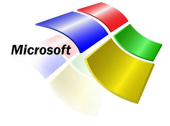 Microsoft partners wit